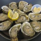 1/2 Dozen Fresh Apalachicola Oysters – Raw